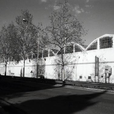 V MUNICIPIO (1995)